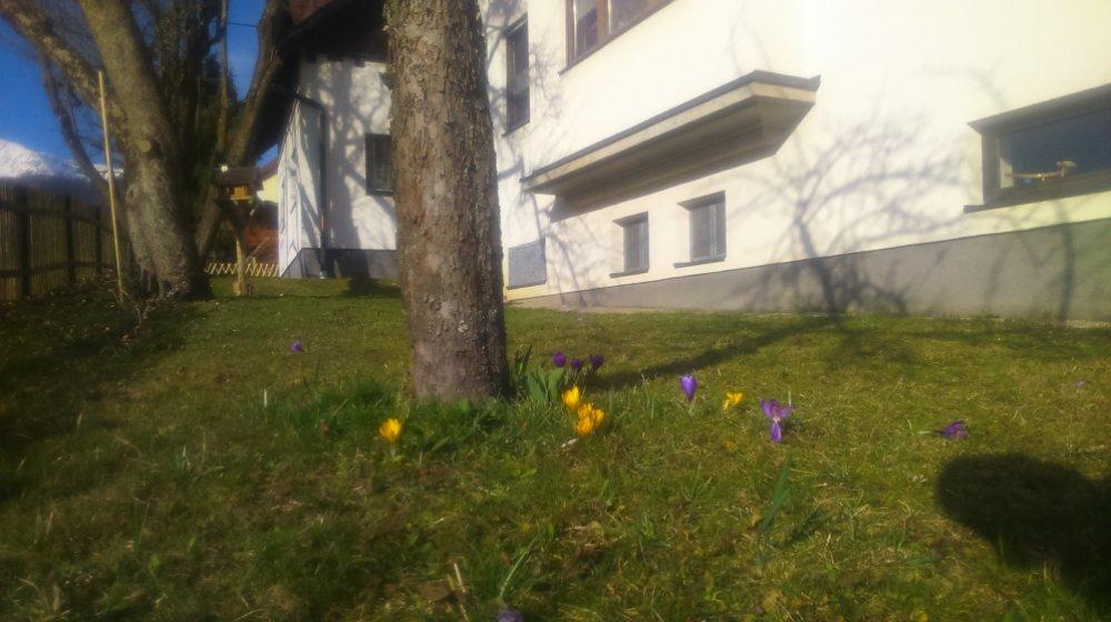 Haus Ruf Ferienwohnungen Windischgarsten Apartment Winter Urlaub Pyhrn-Priel